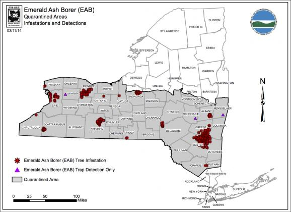 emerald ash borer map ny 2014