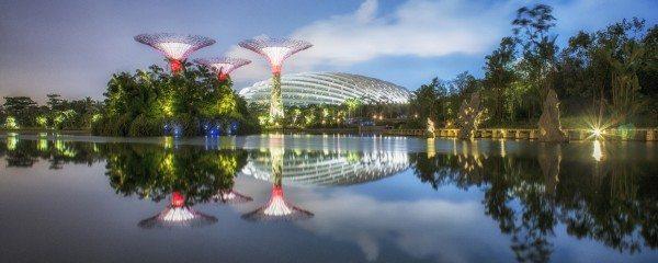 Garden by the Bay, Singapore. Design credit: Grant Associates. Photo: Darren Chin